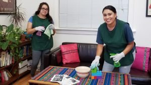Professional Eco-Cleaning on Kiva